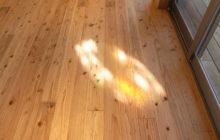 床に落とされたステンドグラスのひかり