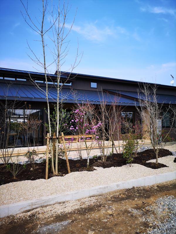 東側隣地から見た庭と建物の外観の様子
