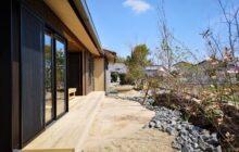 建物側から見た雑木風の自然庭